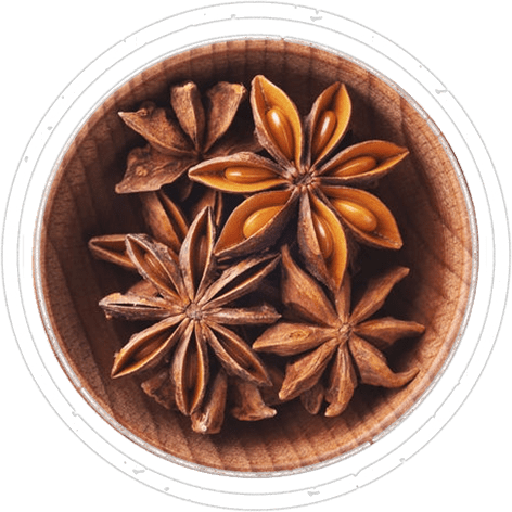 01-spices-anice-stellato