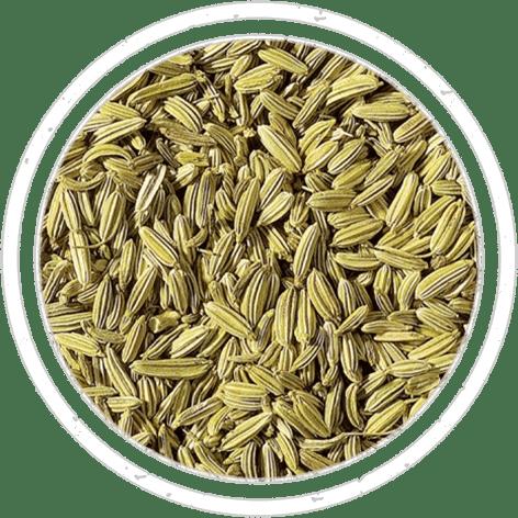 05-spices-semi-finocchio
