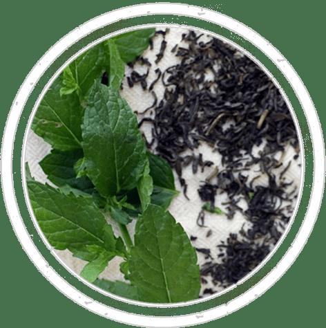 06-spices-semi-menta